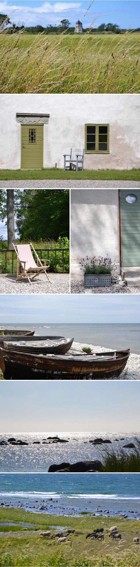 Gotland 2012